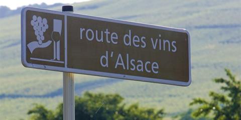 Forårsvine fra Alsace