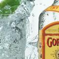 gordons-gin-header