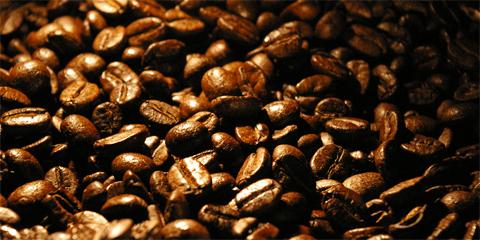 Lær at kende forskel på Caffe Latte, Cappuccino, Latte Macchiato etc.